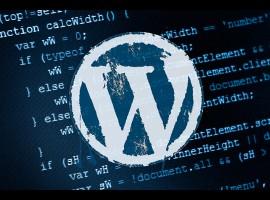wordpress-size