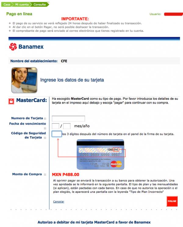 ingresar datos pago en linea cfe